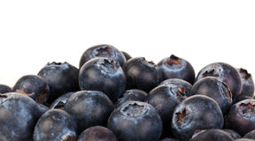 Pile of blueberries. A pile of blueberries on white background Stock Image