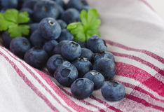 Pile of blueberries Royalty Free Stock Photos