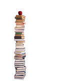 Pile of books. Going to school is your future. Education, learning, teaching Royalty Free Stock Image
