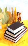 Книги. Stock Images