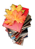 Pile of books and autumn leaves Royalty Free Stock Photography