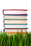 Pile of the Books on the Grass Royalty Free Stock Image