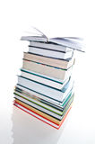 Pile of books. Isolation on the white Royalty Free Stock Images