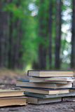 Pile of books. Laying on the ground in sunny alley Stock Photos
