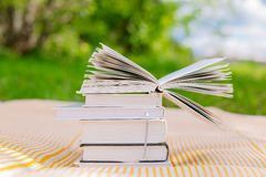 Pile of books with one opened book. On nature background Royalty Free Stock Image