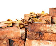 A pile of bricks and dry leaves isolated on white. Good space for text. Vintage scene stock photo