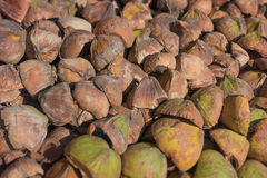 Pile of broken coconut husks Stock Photo