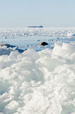 Pile of broken ice floes on the Baltic Sea Royalty Free Stock Photography