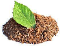 Pile of brown clay with green leaf Stock Photography