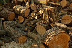 Texture of a pile of brown firewood and logs in the yard. A pile of brown firewood and logs in the yard Royalty Free Stock Photography