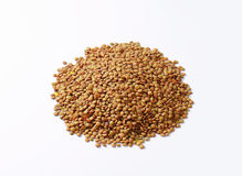 Pile of brown lentils Royalty Free Stock Image