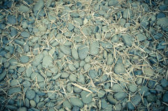 pile of brown pebble stone texture Stock Photography
