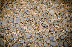 pile of brown pebble stone texture Royalty Free Stock Photography