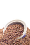 Pile of brown rice Royalty Free Stock Photography