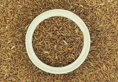 Pile of brown rice Stock Photography