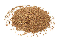 Pile of Buckwheat Royalty Free Stock Images