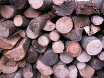 Pile of Burning Wood. A pile of crosscut and split burningwood Royalty Free Stock Photography