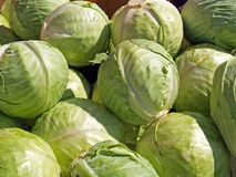 Pile of cabbages. In a market Royalty Free Stock Photo