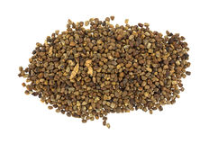Pile of cardamom seeds Stock Images