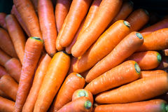 Pile carrot Royalty Free Stock Photo