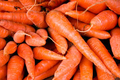 Pile of carrot in the market. A pile of raw carrots with sunlight on a black background stock photos