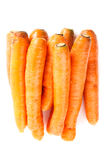 Pile of carrots Royalty Free Stock Photo