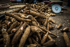 Pile of cassavas near a scale on sale in traditional market in Bogor Indonesia Royalty Free Stock Photography