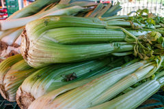 Pile of celery from a market Stock Photos