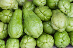 Pile of Chayote Royalty Free Stock Images