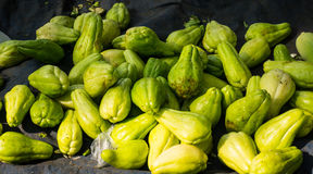 Pile of chayote on top of blue tarpaulin photo taken in Bogor traditional market Royalty Free Stock Photography