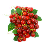 Pile of Cherries Stock Photography