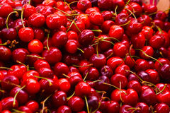 Pile of Cherries at the market. In Barcelona Stock Image