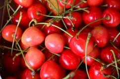 Pile of cherry Royalty Free Stock Photos
