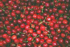 Pile of Cherry Fruit Royalty Free Stock Photo