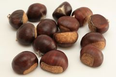 Pile of chestnuts stock image