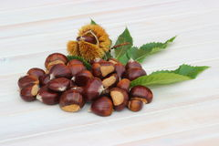 Pile of chestnuts Royalty Free Stock Image