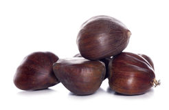 Pile of chestnuts Stock Photography