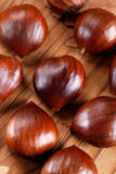 Pile of chestnuts Royalty Free Stock Photography