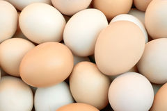 Pile of chicken eggs Stock Photo