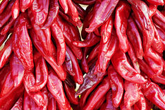 Pile of Chili Peppers Stock Photo