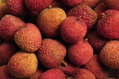 Pile of Chinese lychee fruit nuts Royalty Free Stock Images