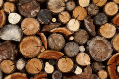 Pile of chopped fire wood. Prepared for winter Royalty Free Stock Images