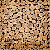 Pile of chopped fire wood. Prepared for winter Royalty Free Stock Photography