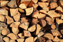 Pile of chopped fire wood prepared for winter. Royalty Free Stock Photos