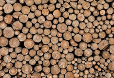 Pile of chopped fire wood prepared for winter time Royalty Free Stock Photo