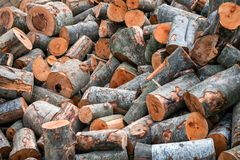 Pile of chopped fire woods. As a texture Stock Images