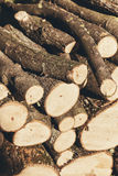 Pile of chopped firewood logs Royalty Free Stock Photo