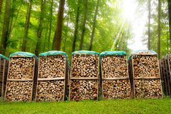 Pile of Chopped Firewood in the Woods Royalty Free Stock Images
