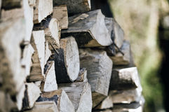Pile of chopped logs. Pile or stack of chopped logs outdoors Stock Photography