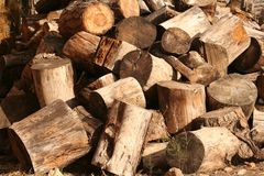 Pile of chopped logs. Pile of chopped timber logs outdoors Royalty Free Stock Images